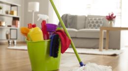 Topcular Ev Temizlik Şirketleri