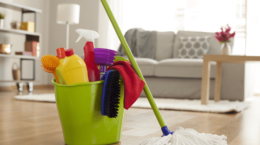 Boş  Ev Temizliği Cevizlibağ